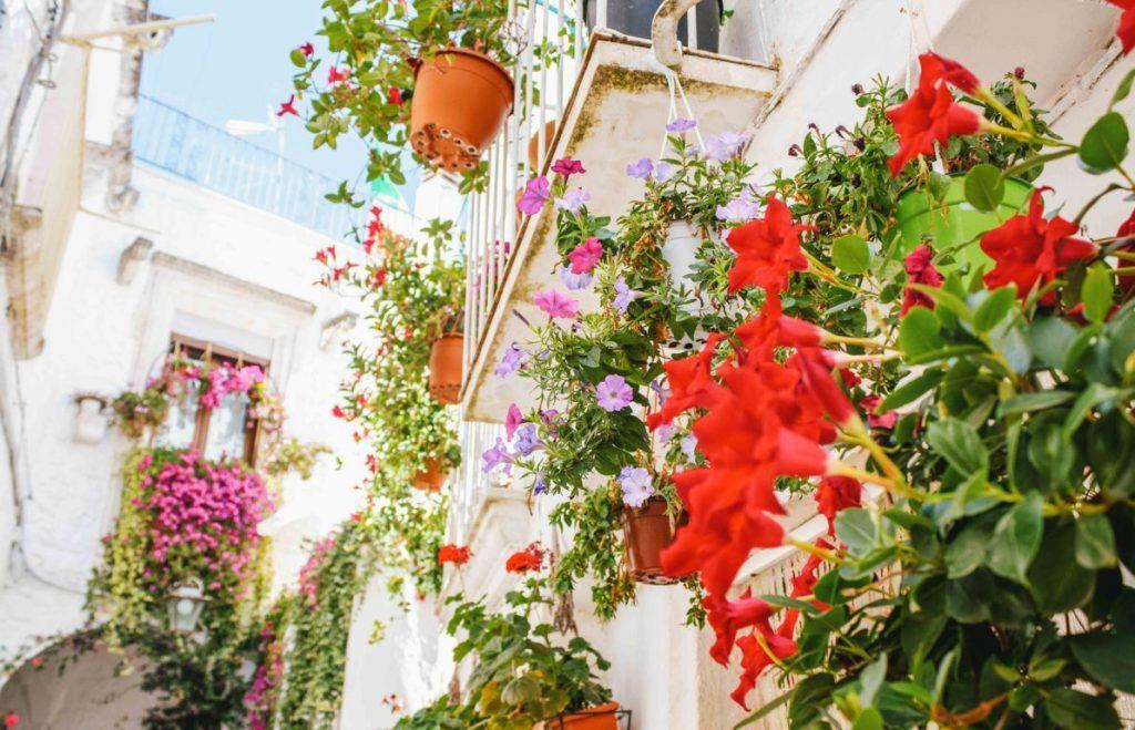 Balconi fioriti Locorotondo