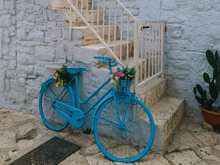 Bicicletta blu